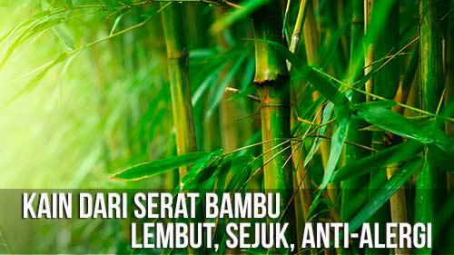 Bamboo2-WEB